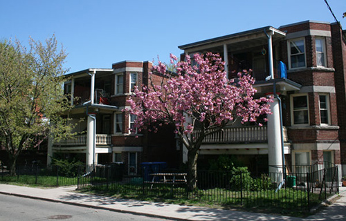 Dufferin-Grove