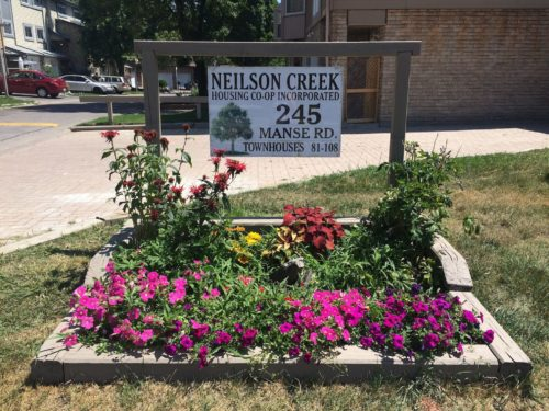 Neilson Creek